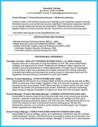 Cissp Resume Example Cissp Resume Example Examples Of Resumes 9