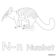 Small Picture N for Numbat Coloring Page Stock photo and royalty free images on