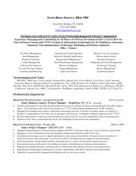Senior Project Manager Resume Resume Templates