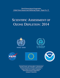 ozone layer essay ozone layer worksheet worksheet workbook site  ozone layer depletion acfm scientific assessment of ozone depletion 2014 2550 x 3300 essay on women entrepreneurs