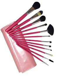 12pc professional makeup brush