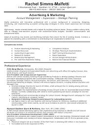 Resume Samples Vice President Marketing Create Professional