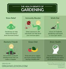 gardening a comprehensive guide from
