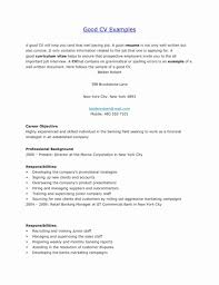 16 Luxury Young Professional Resume Template Free Resume Ideas