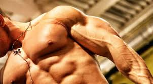 Steroid Cycle Chart Steroid Cycles The Best Steroid Cycle For 2019