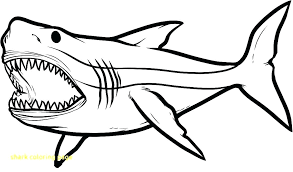 Coloring Page Shark Coloring Page Hammerhead Shark