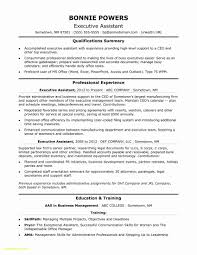 Ceo Resume Sample Ceo Resume Samples Free Download Ceo Resume Sample Doc Unique 60 19