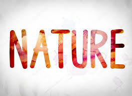 Word Of Nature Nature Concept Watercolor Word Art Stock Photo Enterlinedesign