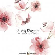 light pink floral background tumblr. Exellent Floral Cherry Blossom Background In Watercolor Style For Light Pink Floral Background Tumblr N