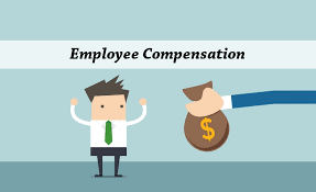 Compensation And Benefits Plan For Employee Compensation And Benefits Consulting