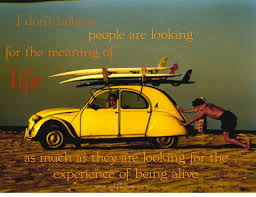 Vw Quote 100 best Joseph Cambell images on Pinterest Joseph campbell Books 82