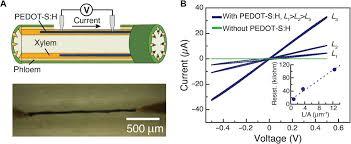 electronic plants science advances high res image