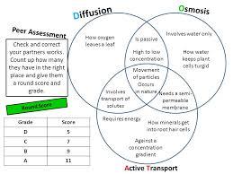 Venn Diagram Of Diffusion Osmosis And Active Transport Diffusion Osmosis And Active Transport Venn Diagram Major
