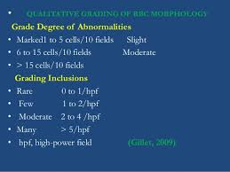 Rbc Morphology Grading Chart Blood Film Examination Its Recent Investigative Methodology