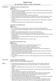 Salesman Resume Examples Security Sales Resume Samples Velvet Jobs 19