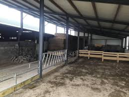 farmer writes kitting out a shed with new barriers to house sheep 16 december 2016 free