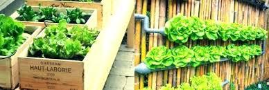 apartment herb garden balcony. Unique Apartment Balcony Garden Kit Vegetable  Here Are A Few Great Growing To Apartment Herb Garden Balcony