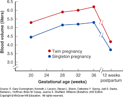 Estradiol Levels During Pregnancy Chart Maternal Physiology Williams Obstetrics 25e Accessobgyn