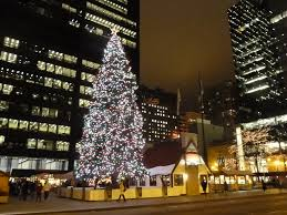 Daley Center Tree Lighting Daley Center Christmas Tree Chicago By Night Mark