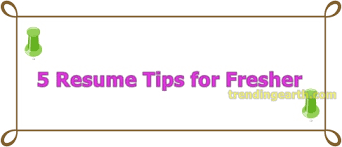 To Prepare Resume 5 Killer Resume Tips For Freshers To Get Hired
