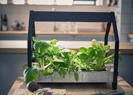 portable hydroponic indoor garden kit great hydroponic indoor gardening