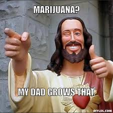 Weed Memes, Just For Fun | The Nug via Relatably.com