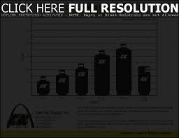 Portable Propane Tank Size Chart Www Bedowntowndaytona Com