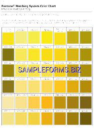 Free Download Pantone Color Chart Pdf Pantone Color Chart Templates Samples Forms