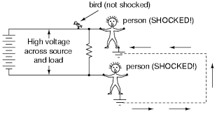 lessons in electric circuits volume i dc chapter 3 each person standing on the ground contacting different points in the circuit a path for shock current is made through one person through the earth