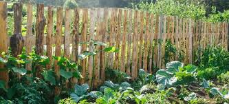 how to build a vegetable garden fence