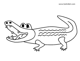Small Picture Crocodile Coloring Pages Printable Get Coloring Pages