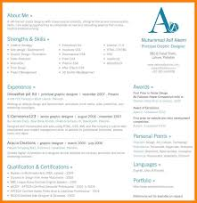 Single Page Resume Template Interesting 28 One Page Resume Template Word How To Create A Resume On Word