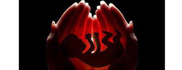 sample essay on buddhist views on abortion essayhomworkhelp org sample essay buddhist views abortion
