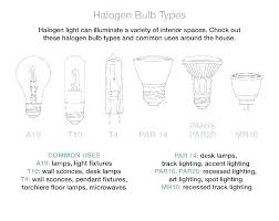 types of lighting fixtures. Types Of Lighting Fixture Light Bulb Shapes Led Flood Fixtures