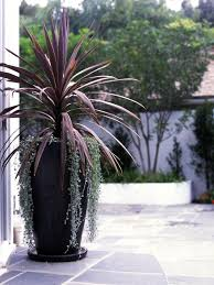 Large Patio Pots and Planters Lovely Of Best 25 Large Outdoor Planters Ideas  On Pinterest Planter