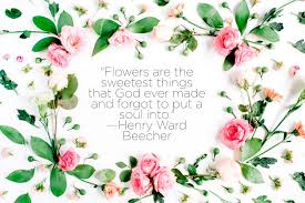 Love Flower Quotes Unique Nature Quotes That Inspire Love Of The Earth Reader's Digest