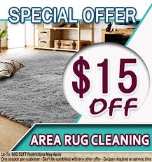 don t damage your rug and get fresh smell