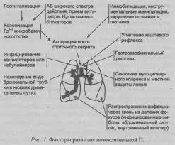 Внутрибольничная нозокомиальная пневмония Медицинский блог  факторы развития нозокомиальной пневмонии
