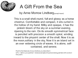 descriptive writing seashells grade ppt video online 6 a