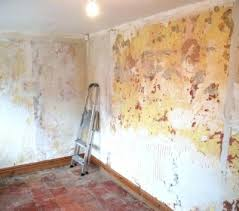 removing wallpaper glue find and
