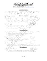 Resume Template For Volunteer Work Valid Resume Samples