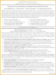 Executive Format Resume Impressive Senior Sales Manager Resume Templates Sample Executive Page 48