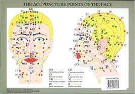 Facial Rejuvenation Cosmetic Acupuncture Points Chart Acupuncture Points Of The Face Plastified A4 9789079887385