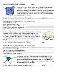 Natural Selection And Evidence Of Evolution Worksheet Answers furthermore Printables  Evolution Worksheet  Ronleyba Worksheets Printables further Evolution by Natural Selection furthermore Chapter 16 worksheets further Pre lab worksheet on evolution and natural selection   Name further Natural selection lower ability by itegallagher   Teaching besides natural selection   Darwin Correspondence Project moreover Evolution by Natural Selection Worksheet   Hot Resources 2 4 in addition  also  besides . on evolution and natural selection worksheet
