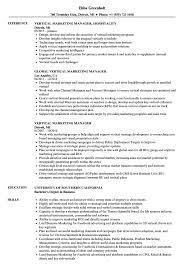 Vertical Marketing Manager Resume Samples Velvet Jobs