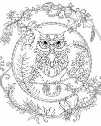 Small Picture Enchanted Forest Owl Coloring pages colouring adult detailed