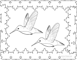 Small Picture Hummingbird Coloring Page Miakenasnet