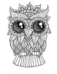 Small Picture Owl Coloring Pages Web Photo Gallery Owl Coloring Pages For Adults