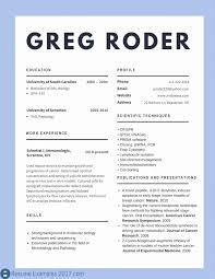 Mergers And Inquisitions Resume Template 43264