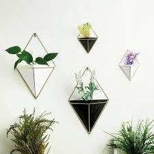 Planten Aan De Muur Tegen Groeien Ikea Buren Hangende Buiten Zelf